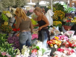 rome italy market flowers